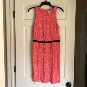 Loft coral cotton summer dress medium